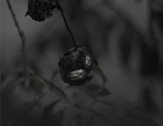 A RAINY DAY AT THE SEE