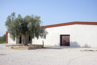 OCCHIPINTI natural wine